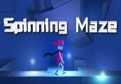 Spinning Maze Steam CD Key