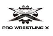 Pro Wrestling X Steam Gift