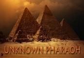 Unknown Pharaoh Steam CD Key