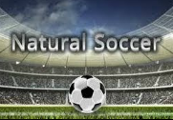 Natural Soccer Steam CD Key