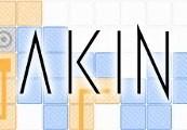 Akin Steam CD Key