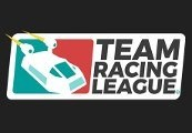 Team Racing League Steam CD Key