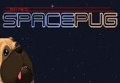 Super Space Pug Steam CD Key