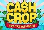 Cash Crop Steam CD Key