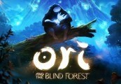 Ori and the Blind Forest Steam Gift