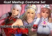 DEAD OR ALIVE 5 Last Round - Gust Mashup Costume Set DLC ASIA Steam Gift