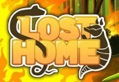Lost Home Steam CD Key