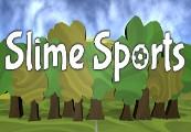 Slime Sports Steam CD Key