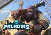 Paladins - Barik Hero + Swashbuckler Skin PS4 CD Key
