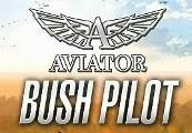 Aviator - Bush Pilot Steam CD Key