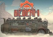 Skyshine's BEDLAM RU VPN Required Steam Gift
