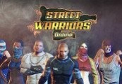 Street Warriors Online + Premium Pack DLC Steam CD Key