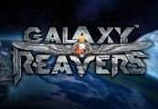 Galaxy Reavers Steam CD Key