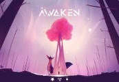 Awaken Steam CD Key