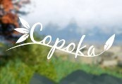 Copoka Steam CD Key