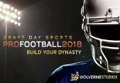 Draft Day Sports: Pro Football 2018 Steam CD Key