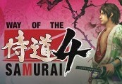 Way of the Samurai 4 Steam Gift