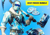 Fortnite Deep Freeze Bundle Précommande Clé PS4
