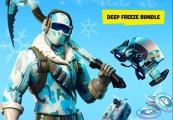 Fortnite Deep Freeze Bundle PS4 CD Key