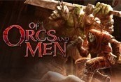 Of Orcs and Men RU VPN Required Steam CD Key