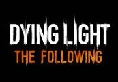 Dying Light - The Following Expansion Pack Uncut Steam CD Key