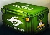 CS:GO Team Secret Skin Case | Kinguin