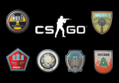CS:GO - Series 1 - Blindbox Random Collectible Pin