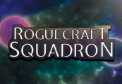RogueCraft Squadron Steam CD Key