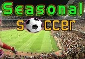 Seasonal Soccer Steam CD Key