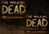The Walking Dead + Season 2 Steam Gift
