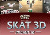 Skat 3D Premium Steam CD Key