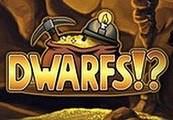 Dwarfs!? Steam CD Key