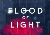 Flood of Light Steam CD Key