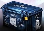 TeasyCat CS:GO Case