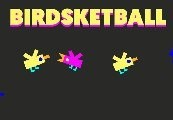Birdsketball Steam CD Key