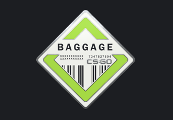 CS:GO - Series 2 - Baggage Collectible Pin