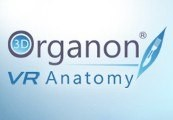 3D Organon VR Anatomy Steam CD Key
