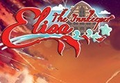 Elisa: the Innkeeper Steam CD Key