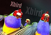 Xbird Steam CD Key