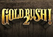 Gold Rush! 2 Steam CD Key