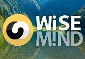 WiseMind Steam CD Key
