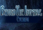 Beyond the Invisible: Evening Steam CD Key