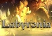 Labyronia RPG Steam CD Key