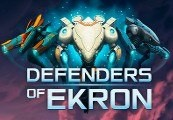 Defenders of Ekron Steam CD Key