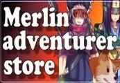 Merlin Adventurer Store Steam CD Key