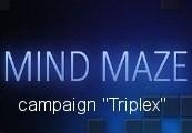 Mind Maze - Campaign