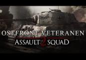 Men of War: Assault Squad 2 - Ostfront Veteranen DLC Steam CD Key