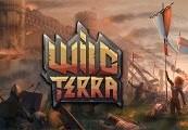 Wild Terra Online Steam CD Key