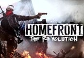 Homefront: The Revolution ASIA Steam CD Key