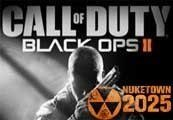 Call Of Duty Black Ops II Steam Key + Nuketown